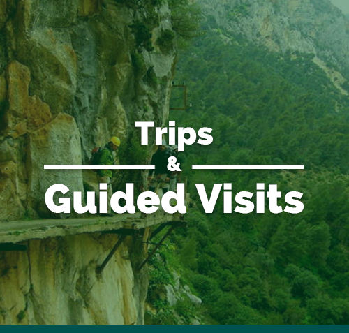 Trips and Guided Visits