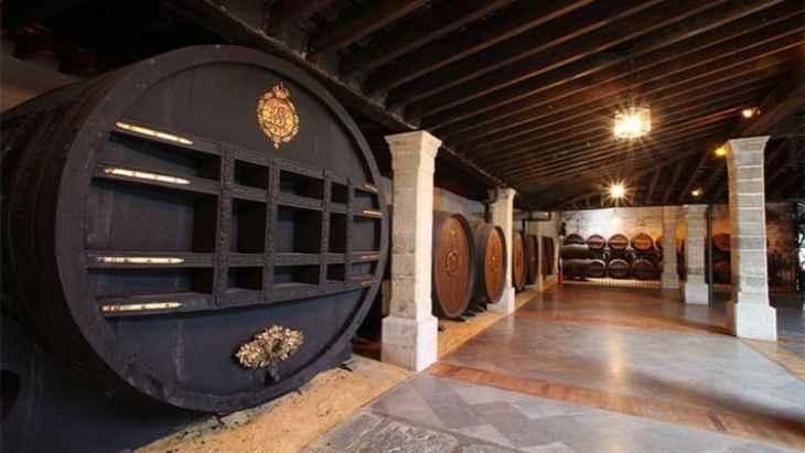 wineries-tio-pepe-tour-6