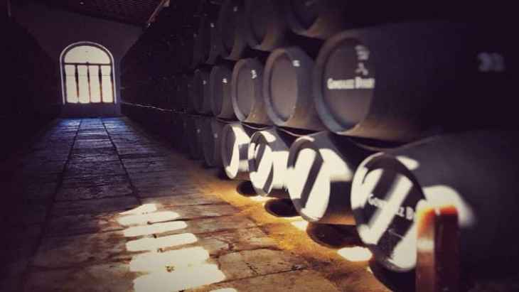 wineries-tio-pepe-tour-7