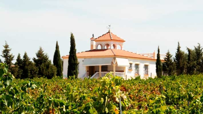 guided-tour-montilla-essential-5
