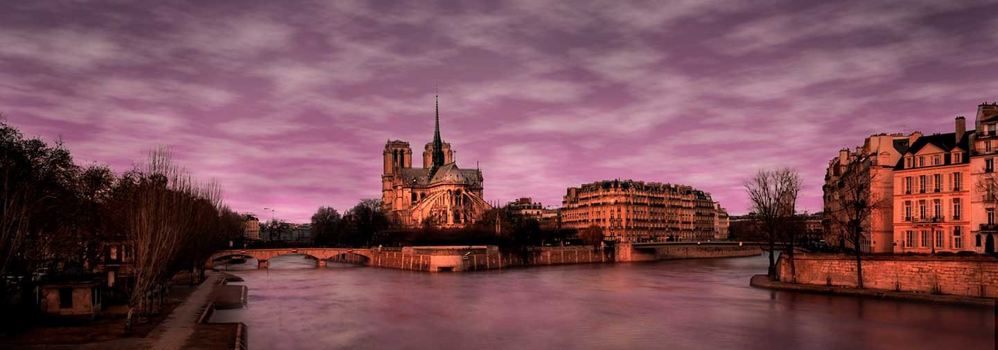 The Resurgence of Notre Dame Guided Tour