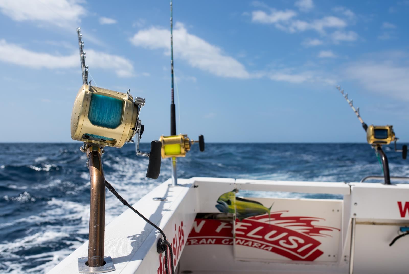 Sport-fishing-in-the-south-of-Gran-Canaria-5
