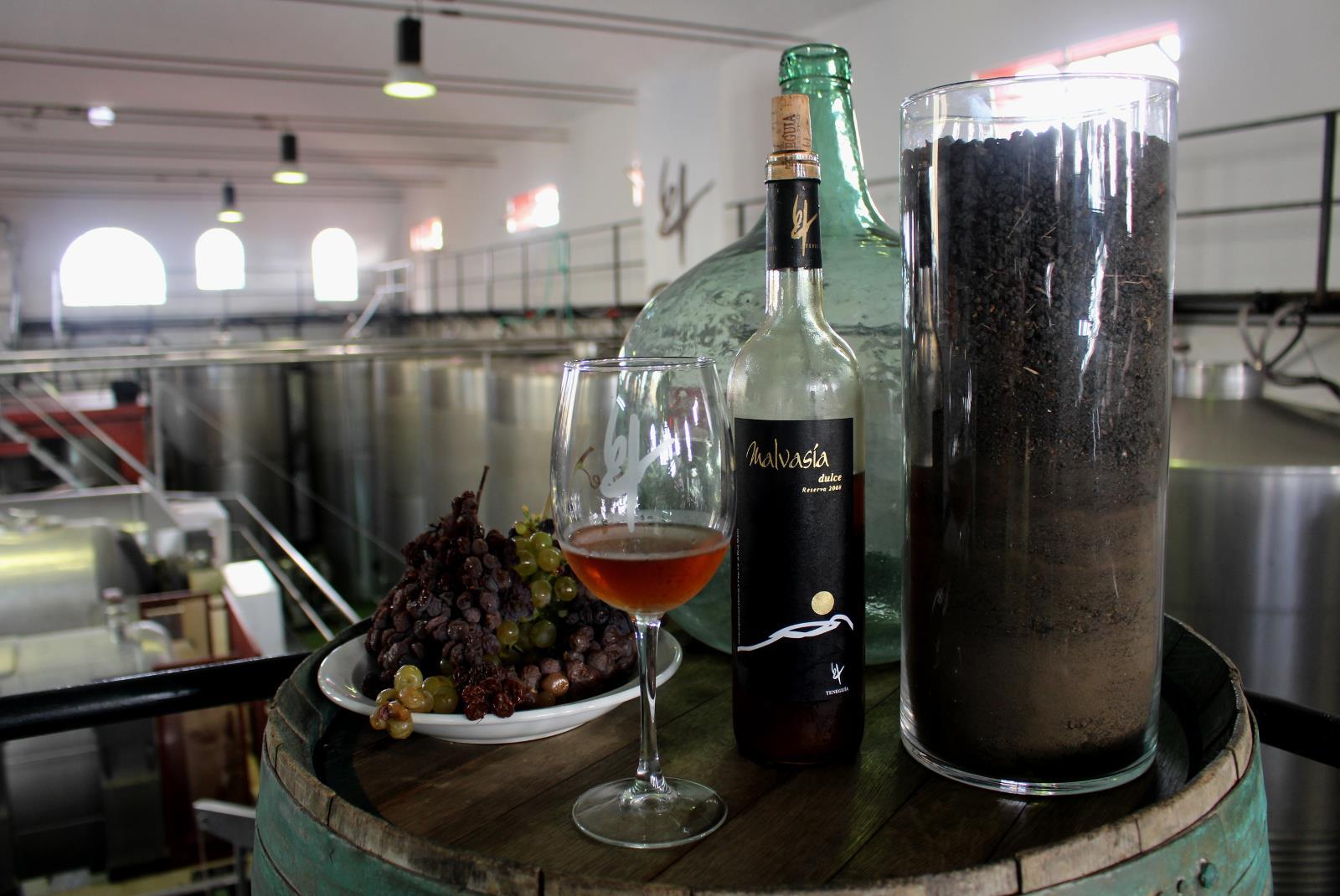 Visit-Bodegas-Teneguia-winery-with-wine-Tasting-8