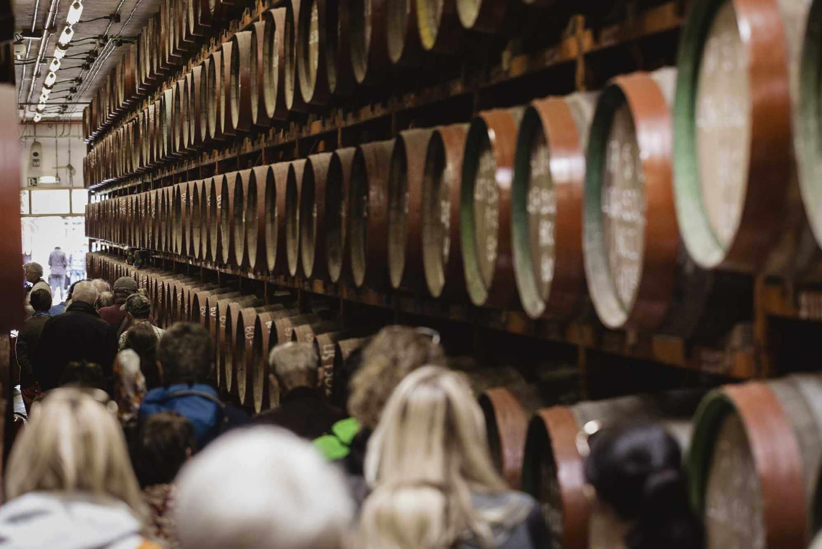 Guided-Tour-at-Ron-Arehucas-Distillery-5