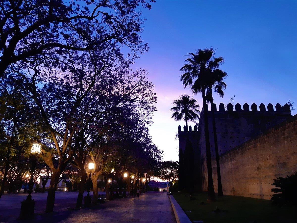 Jerez Ghost Free tour