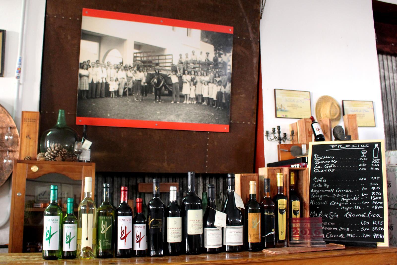 Visit-Bodegas-Teneguia-winery-with-wine-Tasting-7