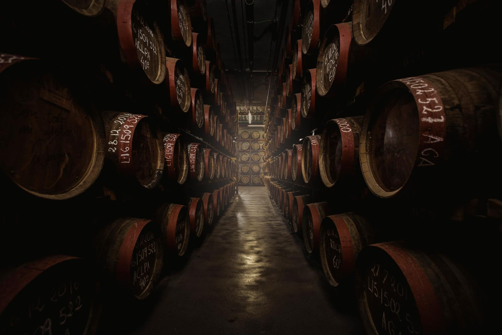 Guided-Tour-at-Ron-Arehucas-Distillery-8
