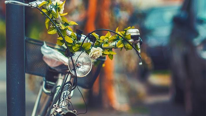 tour-en-bicicleta-por-sevilla-4