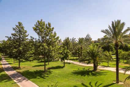 jardin de turia.png