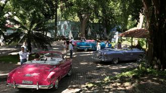 15.Bosque de la Habana.png