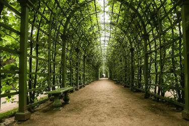 12 Jardines de Verano.png