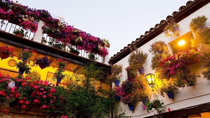 patios-of-cordoba-tour-christmas-2