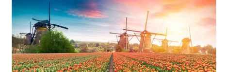Volendam, Marken, Edam and Zaanse Schans Trip