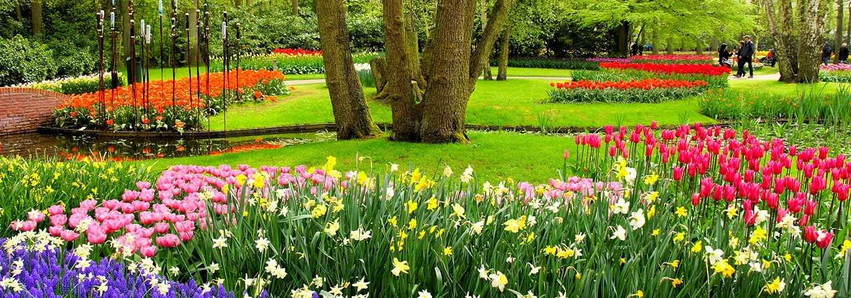 Excursión a los jardines de tulipanes Keukenhof