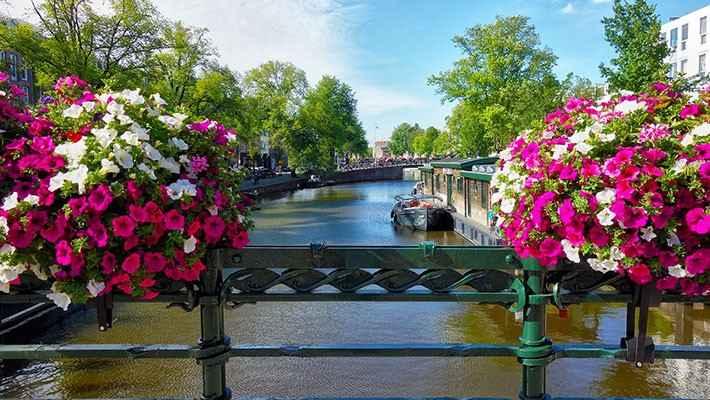 Amsterdam Private Tour-2
