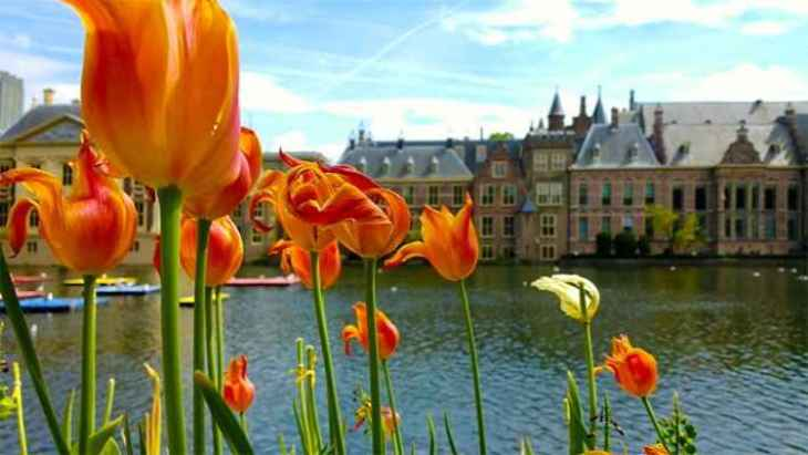 private-trips-from-amsterdam-7