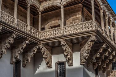 14 Palacio de la Salina.png