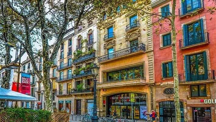 barcelona-private-tour-8