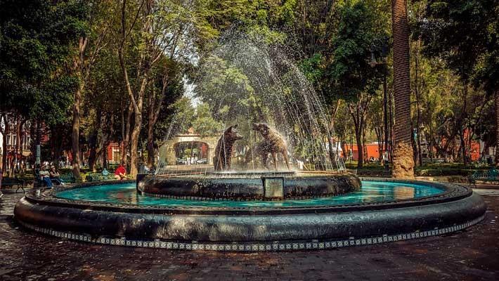 frida-kahlo-in-coyoacan-free-walking-tour-7