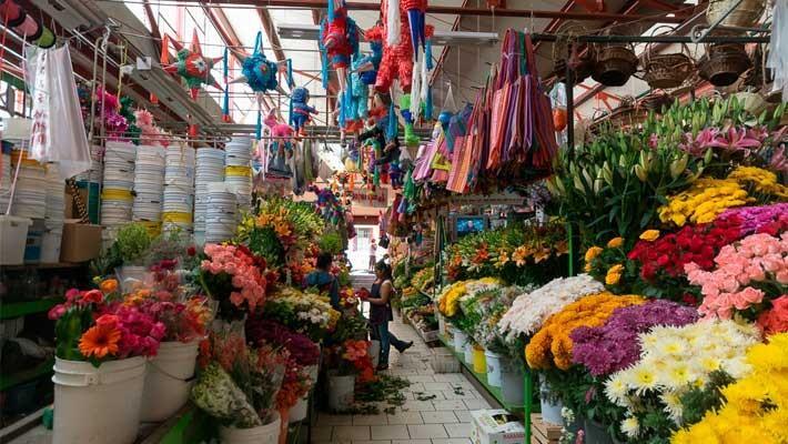 frida-kahlo-in-coyoacan-free-walking-tour-8