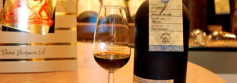 Wineries Perez Barquero Tour