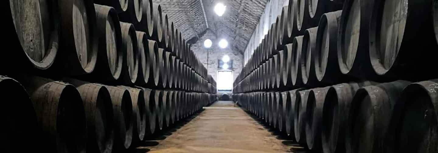 Wineries of Montilla Tour