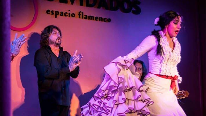 espectaculo-flamenco-granada-3