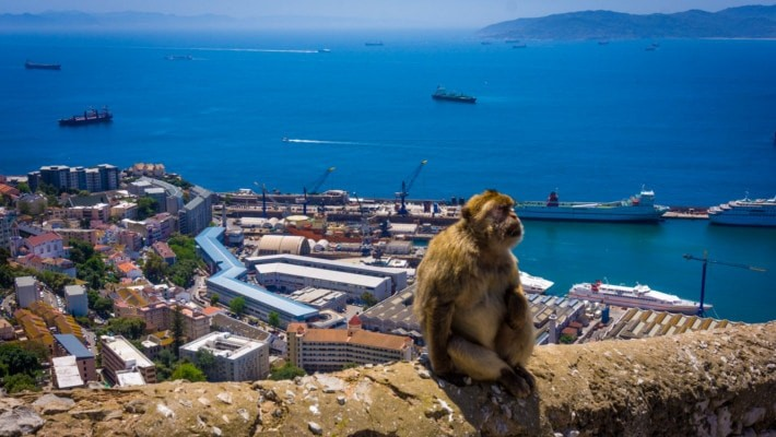 gibraltar-day-trip-from-cadiz-3