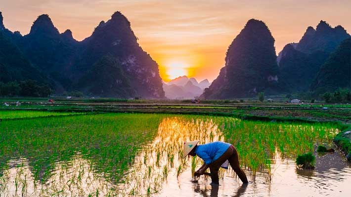discover-ha-giang-4-days-route-from-hanoi-2
