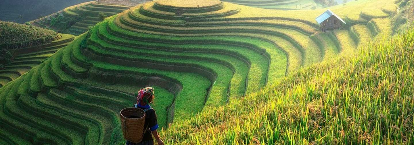 5-Day North Vietnam Excursion