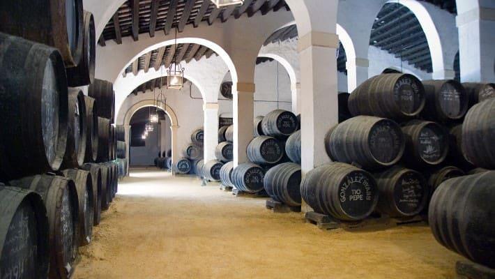 wineries-tio-pepe-tour-4