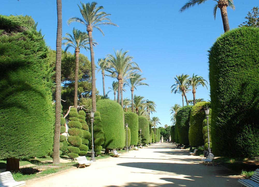 Free-Tour-Caleta-y-Castillos-de-Cadiz-17