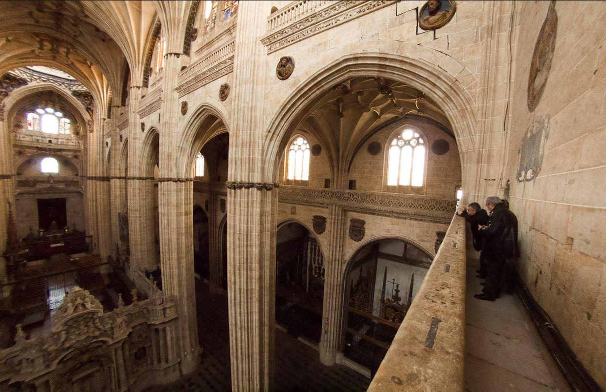 Tour-a-las-Torres-de-la-Catedral-de-Salamanca-22