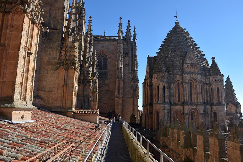 Tour-a-las-Torres-de-la-Catedral-de-Salamanca-3