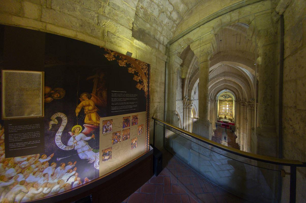 Tour-a-las-Torres-de-la-Catedral-de-Salamanca-12