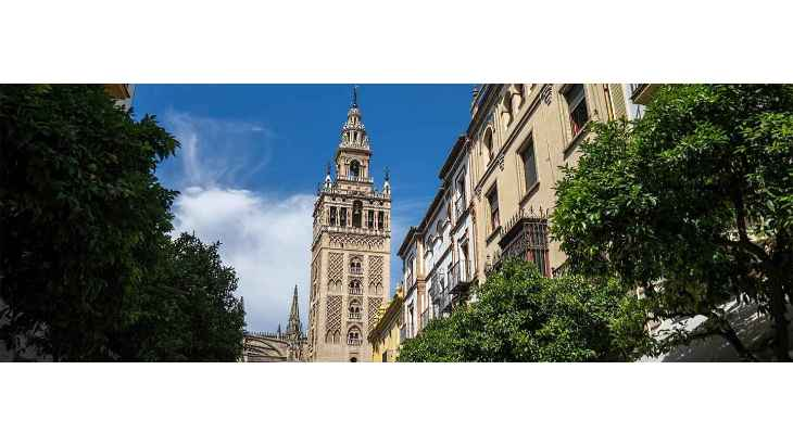 santa-cruz-seville-tour