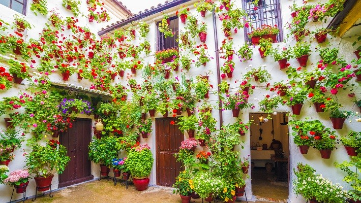 patios-of-cordoba-especial-festival-tour-2
