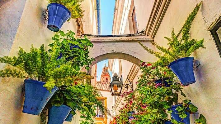 patios-of-cordoba-walking-tour-4