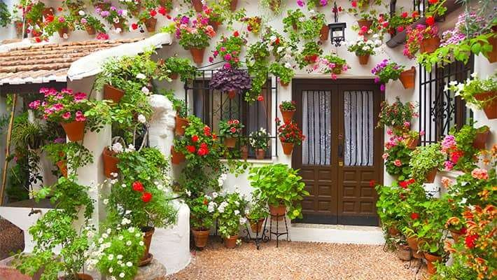 patios-of-cordoba-walking-tour-6