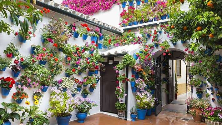 patios-of-cordoba-walking-tour-7