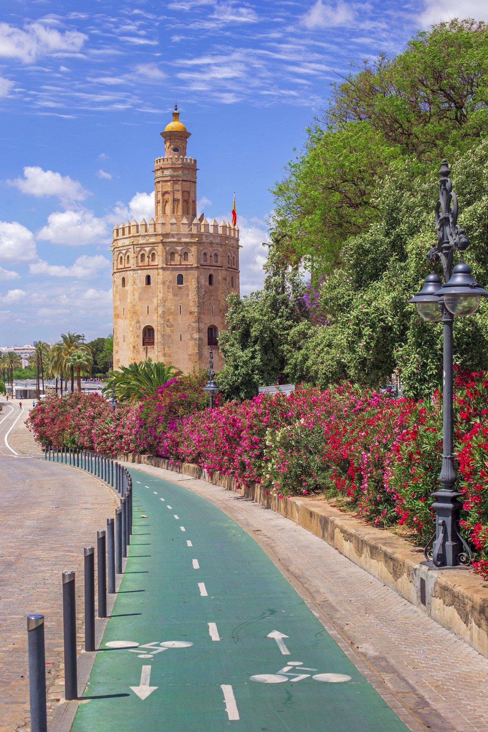 Essential-Seville-bike-&-segway-Tour-4