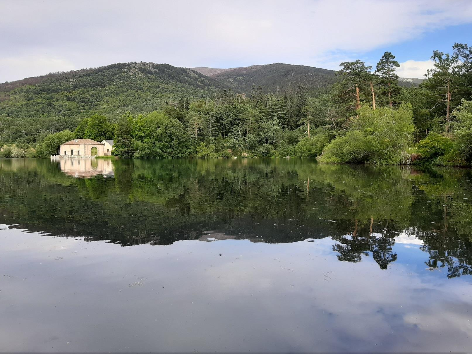 Royal-Palace:-La-Granja-and-Riofrio-Guided-Visit-5