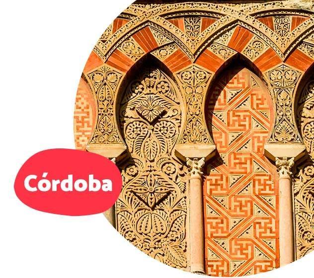 paseo-en-camello-por-el-palmeral-de-marrakech-6