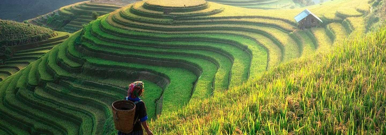 5-Day North Vietnam Excursion