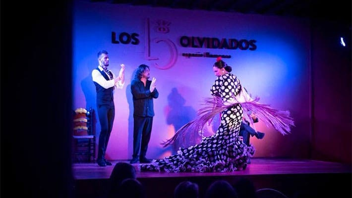espectaculo-flamenco-granada-5