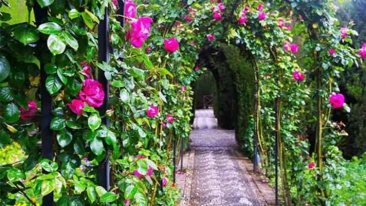 alhambra-of-granada-and-generalife-tour-1