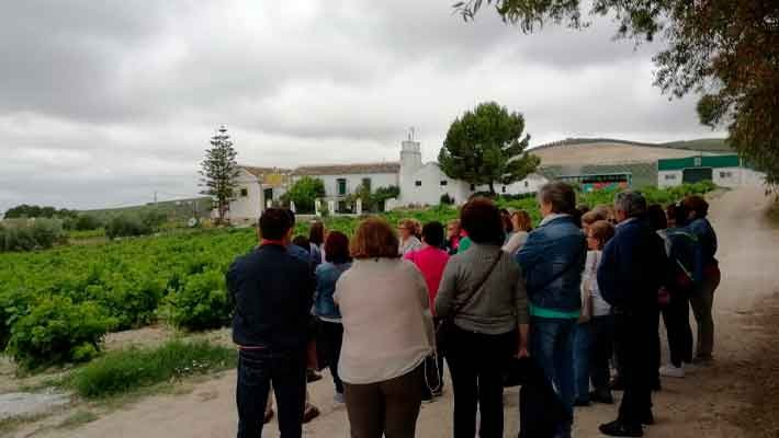 wineries-montilla-tour-3