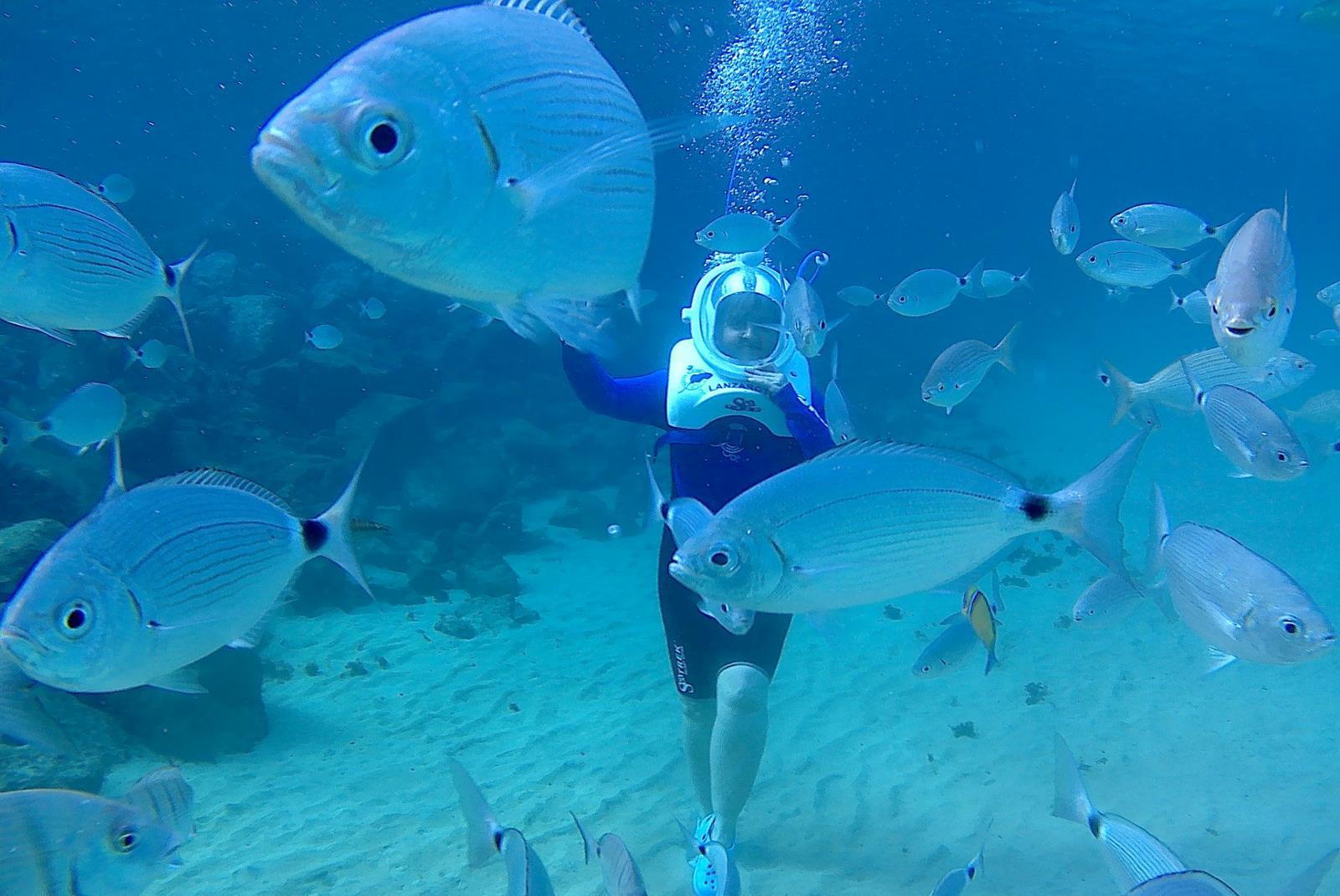 Buceo-con-casco-Sea-Trek-en-Lanzarote-4
