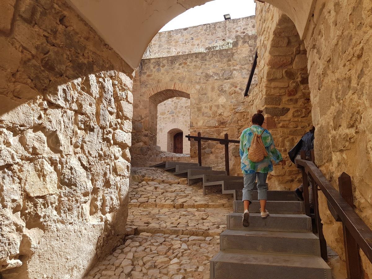 Offer:-Museum,-Castle,-Windmills-of-Consuegra-4