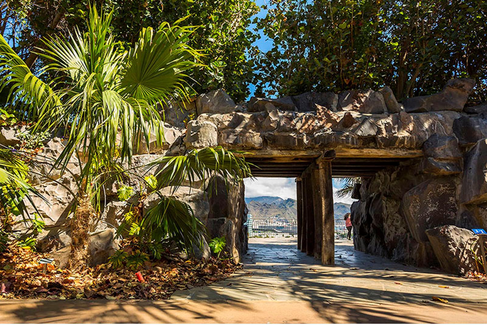 Visita-Jardin-Botanico-Palmetum-4
